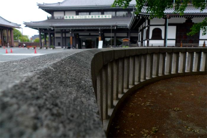 本願寺のイチョウまわり