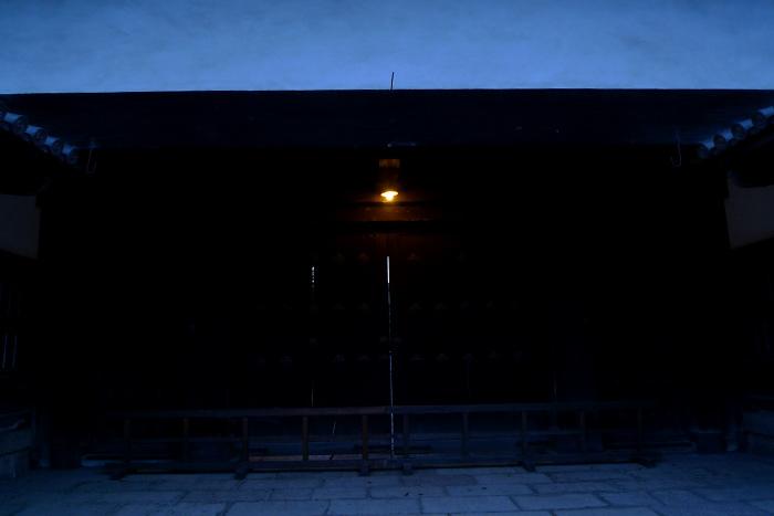 裸電球のライトアップ