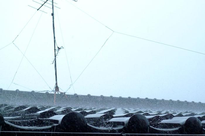 雨の日のアンテナ