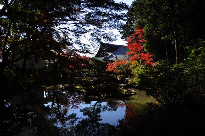 金戒光明寺の庭