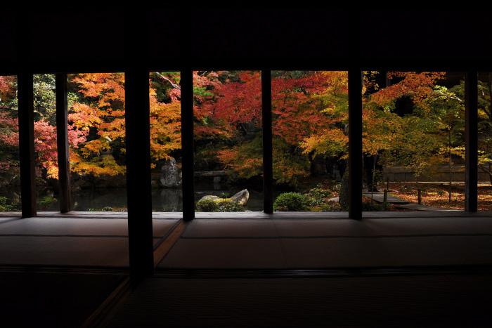 紅葉の蓮華寺