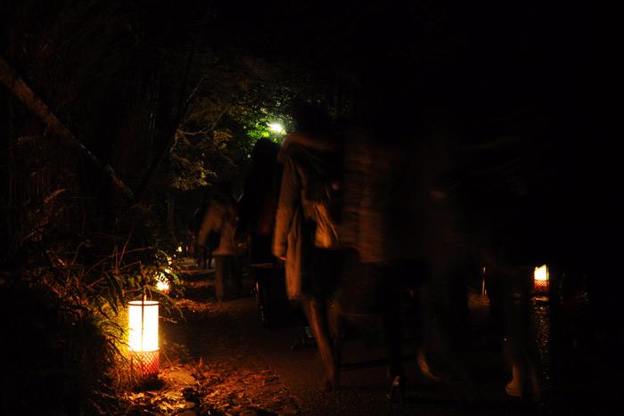 嵐山 花灯路 竹林
