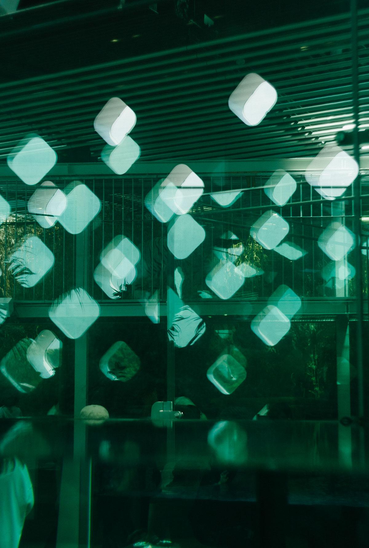 ニフレルのシンボル窓