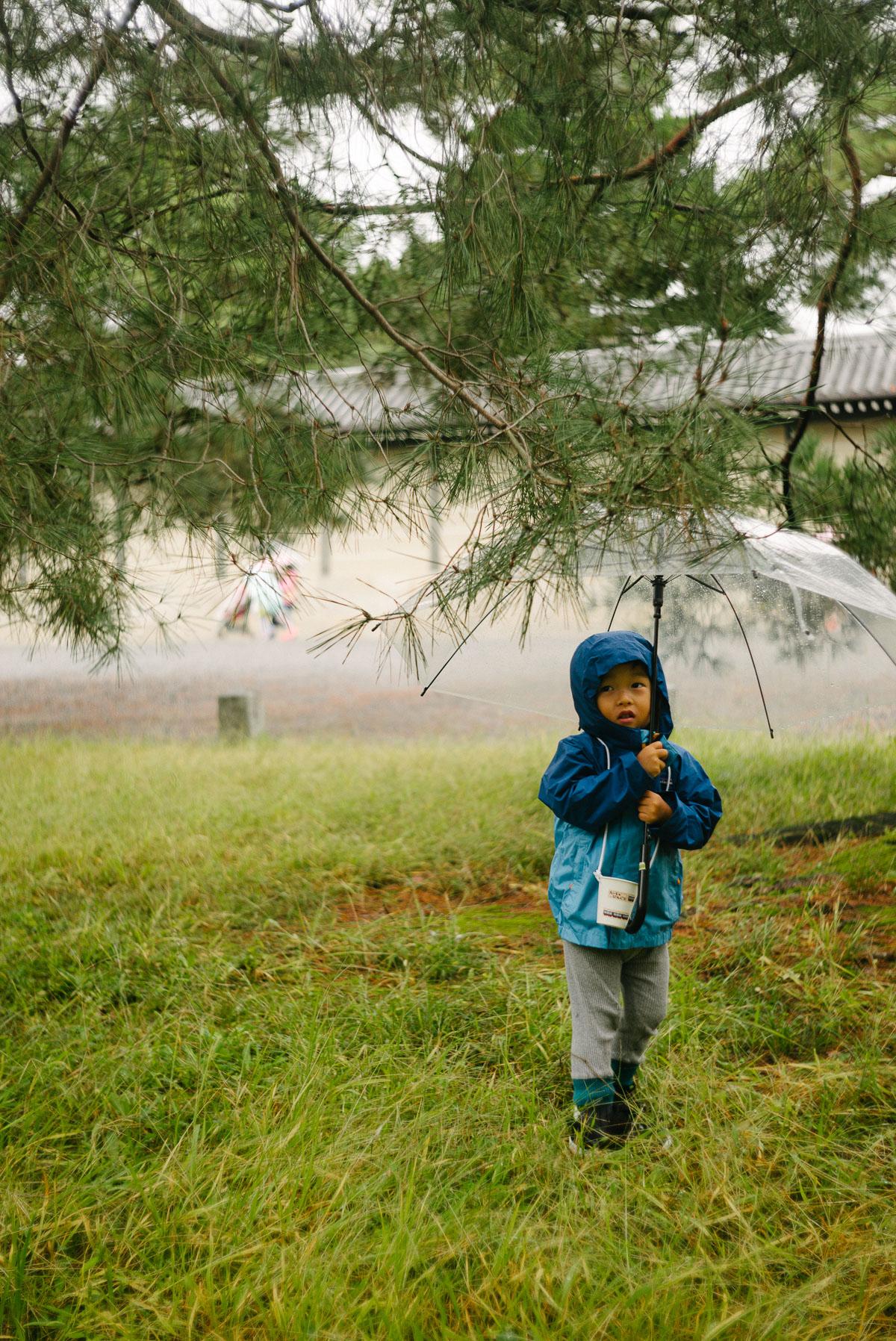 雨の京都御所