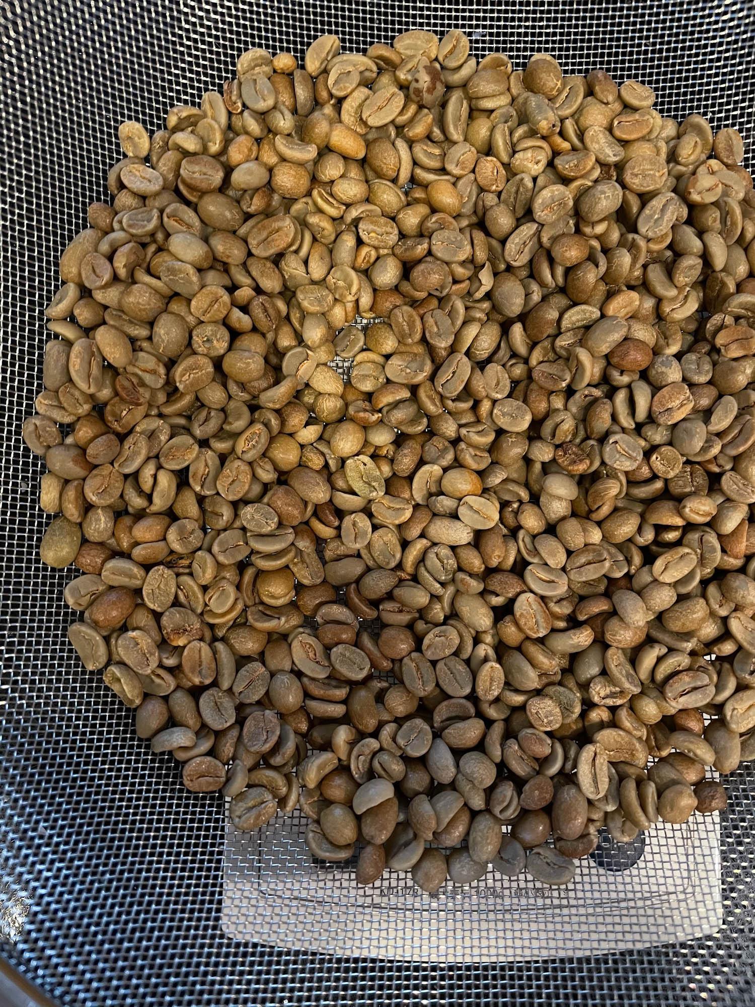 焙煎前の生豆 / フルーツフィールド