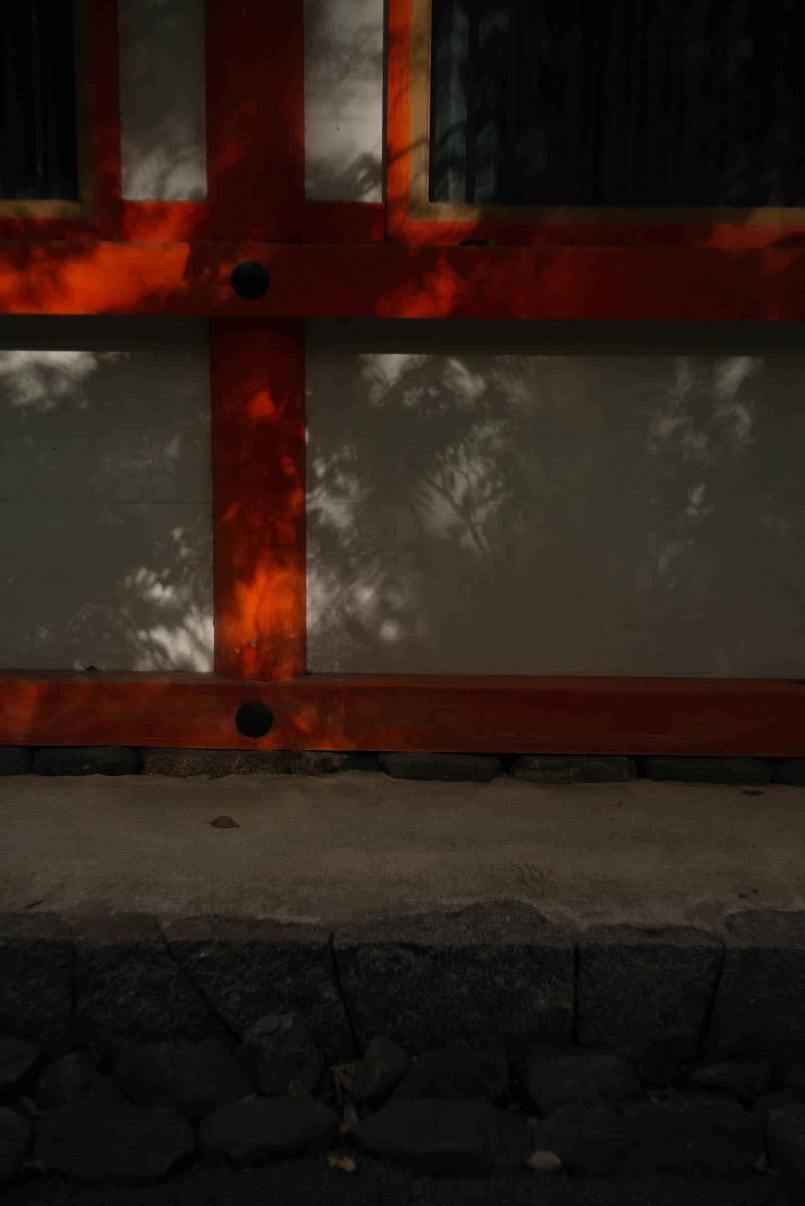 下鴨神社の陰影