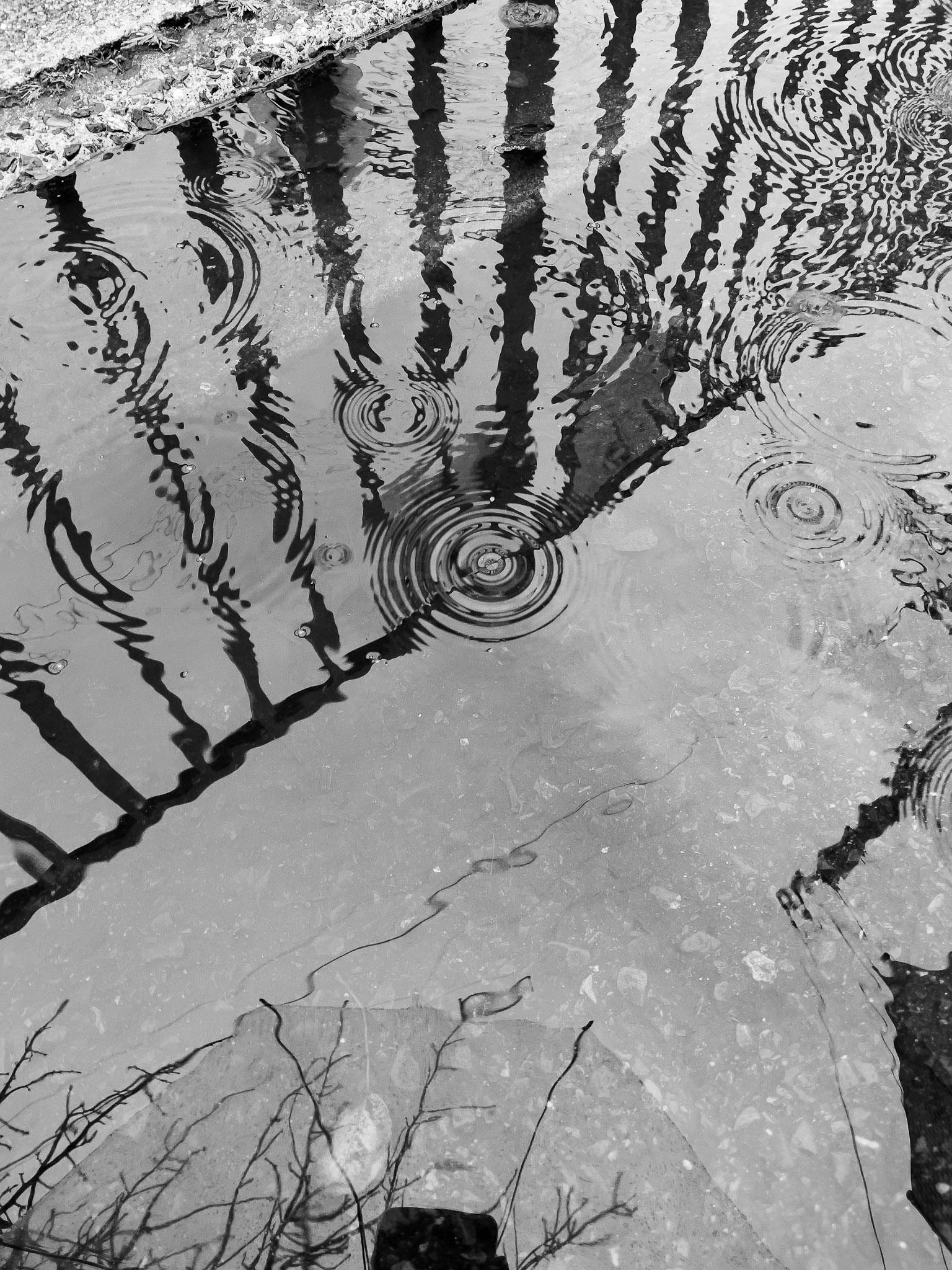 Apple ProRAW で撮った水溜り