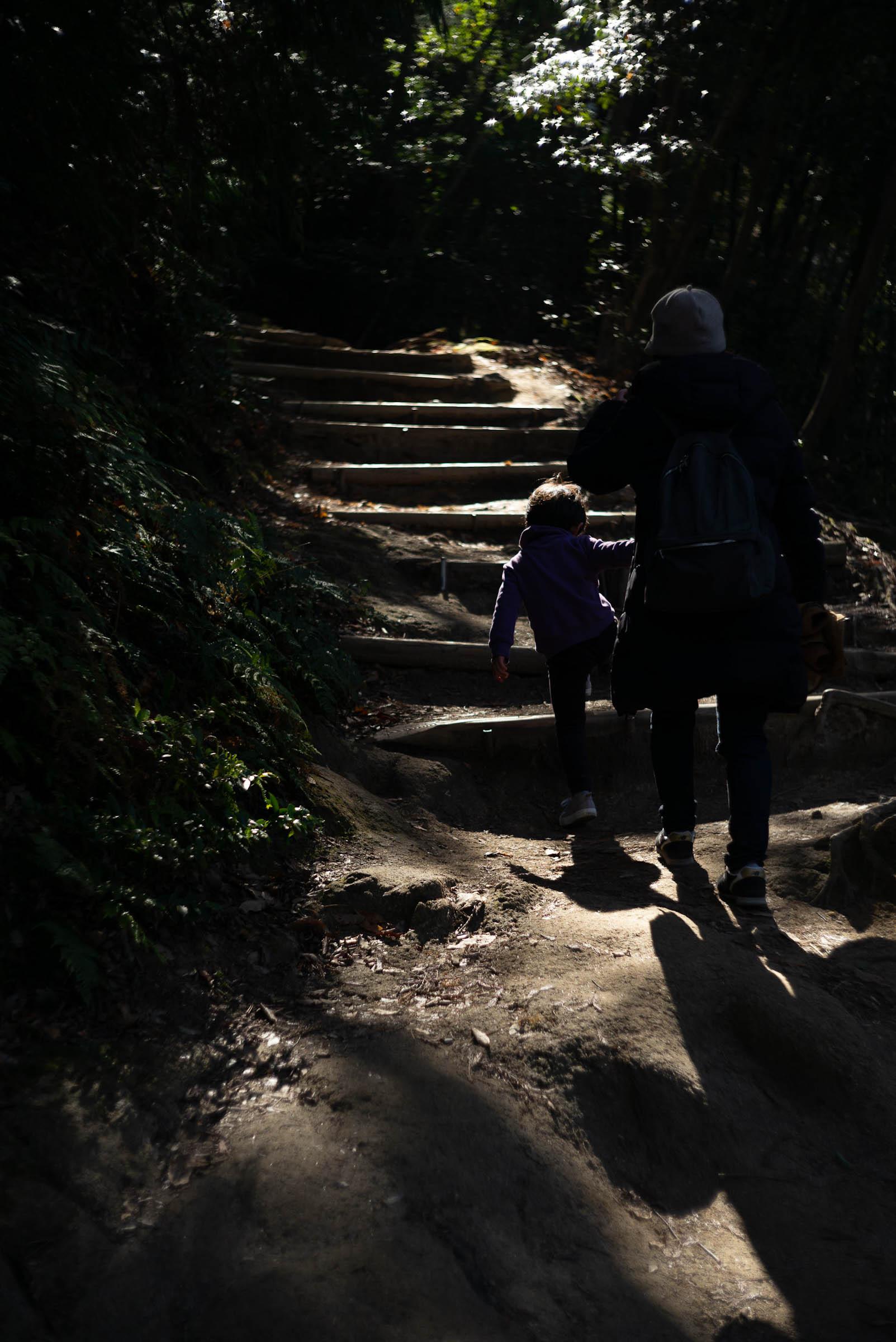 必死に階段を登るタイチ