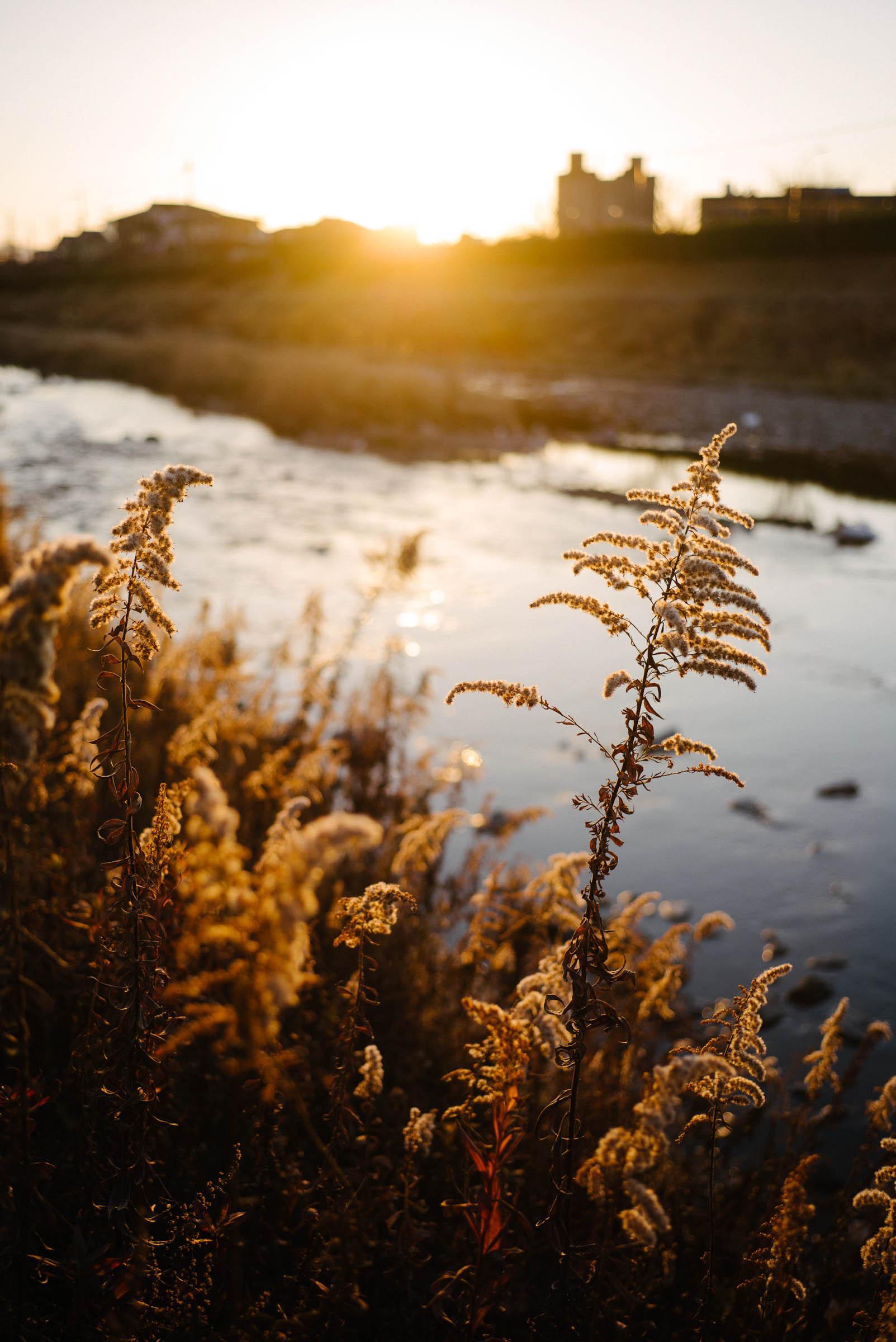 高野川の夕暮れ