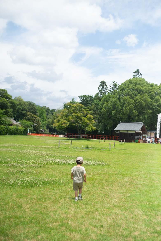 風景が心地いい上賀茂神社